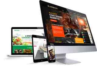 Web Design Company in Dhanmondi