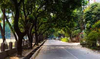 Web Design Company in Banani DOHS Dhaka Bangladesh