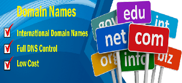 Domain Registration Company